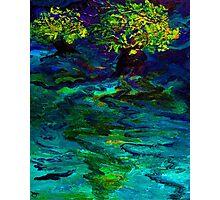Souhwood by Florida Artist John E Metcalfe Photographic Print