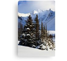 Coniferous island Canvas Print