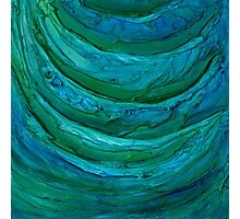 Water by Florida Artist John E Metcalfe Photographic Print