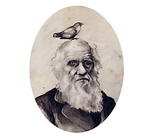 Darwin and the Finch Photographic Print