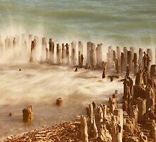waves by Joana Kruse