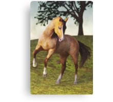 The Rearing Horse Canvas Print