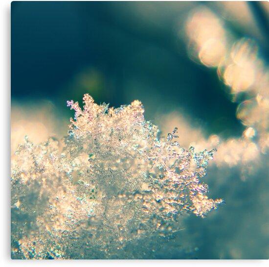 Ice  by Aviana