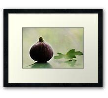 Fig Leaf Framed Print