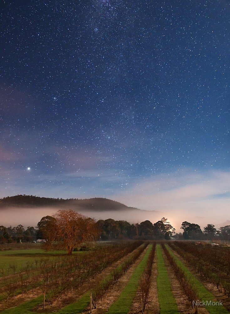 Huon Valley Orchard at night by NickMonk