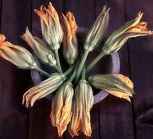 pumpkin flowers by Joana Kruse