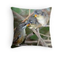 White - Browed Scrubwrens Marlo.Vic. Throw Pillow