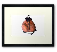 Scrotum backpack  Framed Print