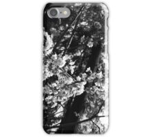Cherry Blossom Branches (BW) iPhone Case/Skin