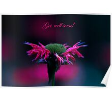 Get WEll Soon Bee Balm Poster