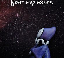Never Stop Seeking by Lisa Snellings