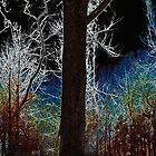 Christmas Eve by Eileen McVey