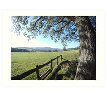 Countryside view Art Print