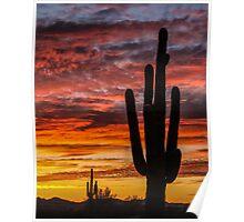 Desert Sunset - Salome, Arizona Poster