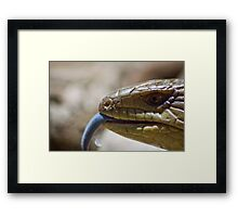 Tongue of Blue Framed Print