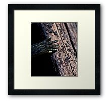 It came from below Framed Print