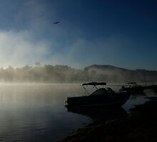 Foggy Dawn Lake Moogerah by Noel Elliot