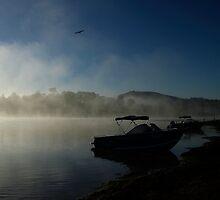 Foggy Dawn Lake Moogerah by Noel Elliot
