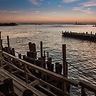 New York City harbor with Statue of Liberty by Tim Cowley