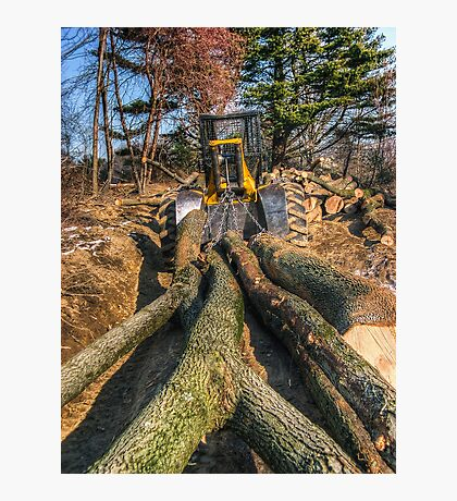Cable Skidder and Logs February 2007 Photographic Print