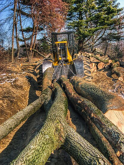 Cable Skidder and Logs February 2007 by Aaron Campbell