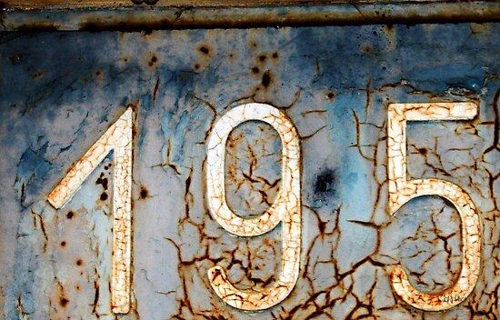 195 by aRj Photo