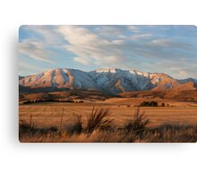 Central Otago Canvas Print