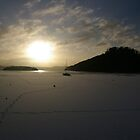 Balmaha Bay in Winter by Susan Dailey