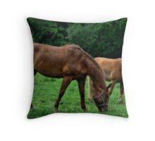 Amazing Graze Throw Pillow
