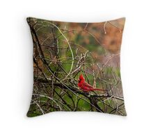Fall Cardinal Throw Pillow