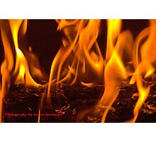Fire by Laura Lawrence Photographic Print