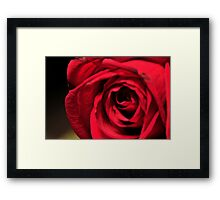 Rose by Laura Lawrence Framed Print