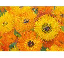 Golden Marigolds Photographic Print