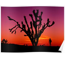 Sunset Over Mojave National Preserve Poster