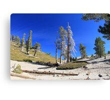 Mt. San Antonio Peak Canvas Print