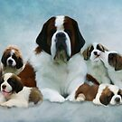 Saint Bernard family  by Cazzie Cathcart