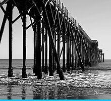 Pier at San Simeon, California by philw