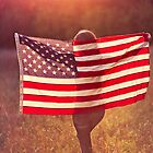 Flag in the Sun by Ken Gehring