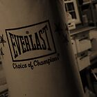 Everlast by Anthony Cummings