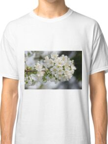 Cherry Blossoms Classic T-Shirt