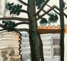 hoop pine and tank by donnamalone