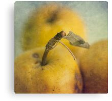 Grunge apples Canvas Print