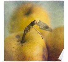 Grunge apples Poster