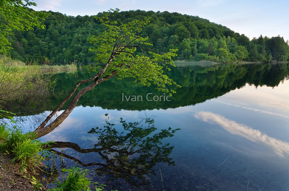 Early morning at Plitivice lakes by Ivan Coric