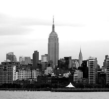 Shades of Grey - USA by Marion  Cullen