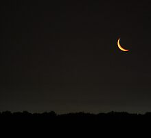 Sliver Moon by Scott Canfield