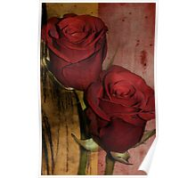 Double roses Poster