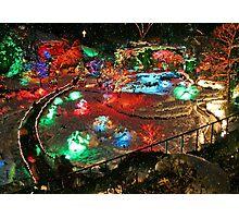 BUTCHART Gardens : Winter Wonderland Photographic Print