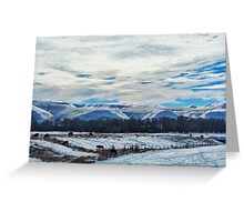 Below the Big Horns, Wyoming Greeting Card