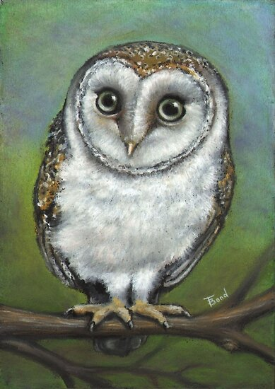 An Owl Friend by tanyabond